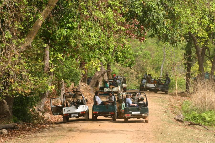 Bandhavgarh-landscape