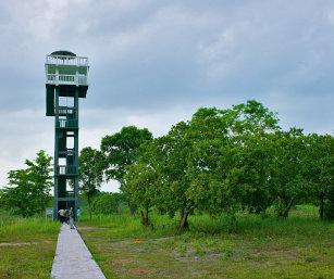 WATCHTOWER, TRISHNA WLS