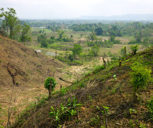TYPICAL JHUMMED MOUNTAINSIDES, TRIPURA