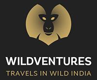 Wildventures