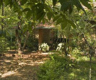 backwoods-camp