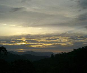 Anamalais-scape