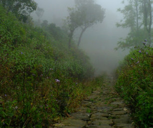 Thalanar-mist