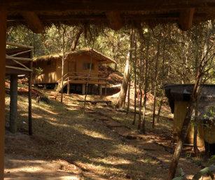 Ganeshgudi Camp